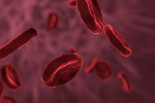 ¿Para qué sirve la biometría hemática en niños?